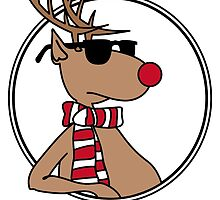 Christmas deer with shades by finity