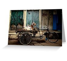 Goat on Wheels Greeting Card