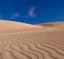Formby Bay Sand Dune  by pablosvista2