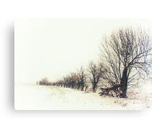A Snowy Line Up Canvas Print