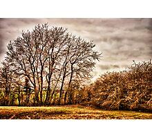 Countryside Ramblings Photographic Print