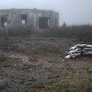 Wasteland by Kevin  Kroeker