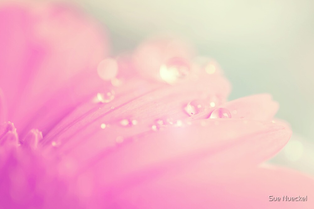 Sprinkle Me With Pastel by ╰⊰✿Sue✿⊱╮ Nueckel