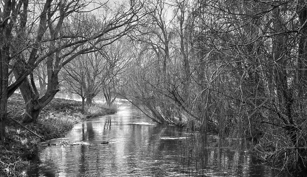 The Great Stour by Geoff Carpenter