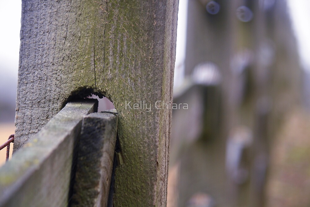 One Post At A Time by Kelly Chiara