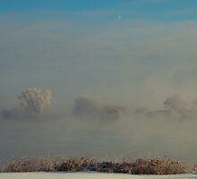 Ice Fog by Richard Lee