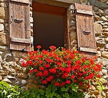 Happy window by Konstantinos Arvanitopoulos