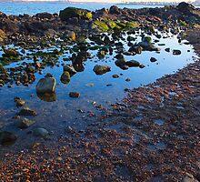 Beverly Shoreline by artbylisa