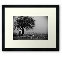The Tree of knowledge good and evil Framed Print