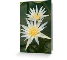 Illumination 2 Greeting Card