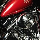 Harley Davidson Electra-Glide Classic by jckiss