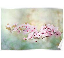 Spring Reverie Poster