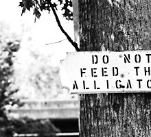 Do not feed the alligators! by cmgable