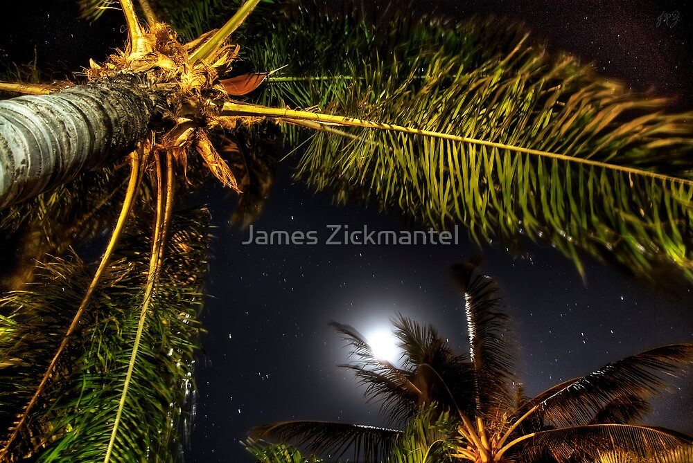 Hammock View at Night (HDR) by James Zickmantel