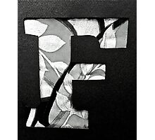 Letters of the alphabet  F Photographic Print