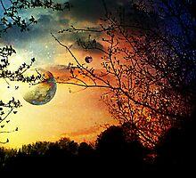 Evening on Risa by Scott Mitchell