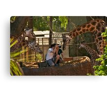 Jealous Much......! Canvas Print