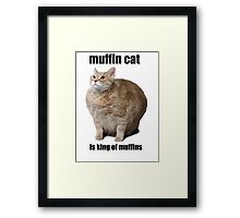 Cat Meme Framed Print
