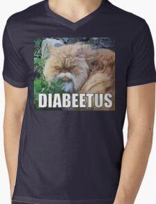 Cat Meme Mens V-Neck T-Shirt