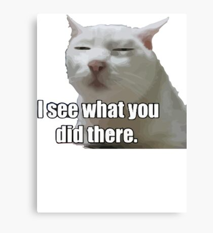 i see what you did  meme cat Canvas Print