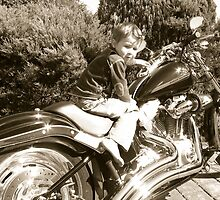 Born To Ride by Caryl Perry