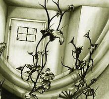 The Mirror by Niki Smith
