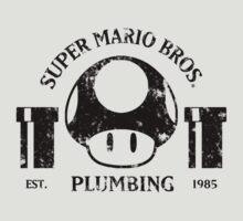 Super Mario Bros. Plumbing by SaBLeSoLDi3R