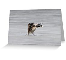 Who unplugged the freezer? Greeting Card