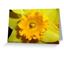 Partly Sunny Greeting Card