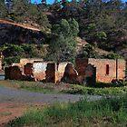 Nursery Ruins # 2 by sedge808