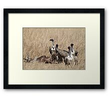 Griffon Vultures with Kill Framed Print