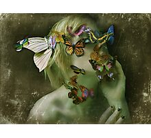 Metamorphosis  Photographic Print