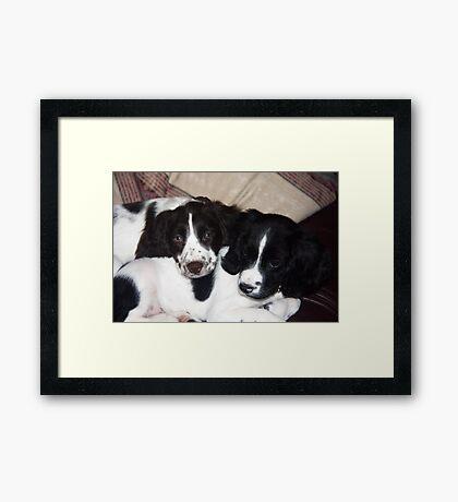 Benson and Jess Framed Print