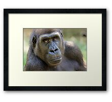 You Only Get One Chance Framed Print