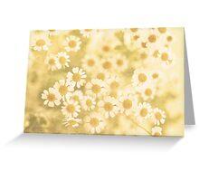 Vanilla Kisses Greeting Card