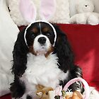 Charlie Ready for Easter by AnnDixon