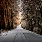 This Is My Road by Charles & Patricia   Harkins ~ Picture Oregon