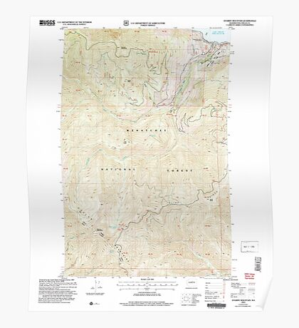 USGS Topo Map Washington State WA Stormy Mountain 244064 2004 24000 Poster