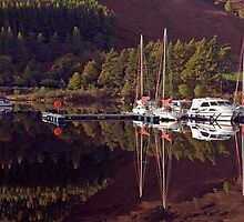 Reflections by JPassmore