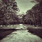 Broken road by Kingstonshots