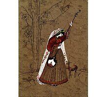 Mughal Miniature Photographic Print