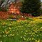 A Fine Spring Garden - $20 voucher