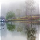 Foggy Morning Scene by Jim Haley