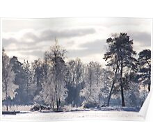 Frosted light  Poster