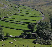 Yorkshire Dales by Jane Horton