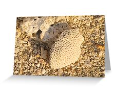 textured coral Greeting Card