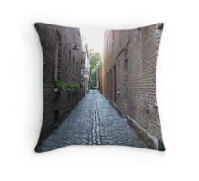 Alleyway in Charleston, SC Throw Pillow