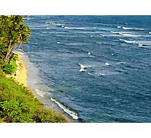 Paradise Waters Photographic Print