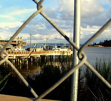 Dock Through Chain Link by trueblvr