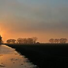 Evening light by tanmari